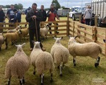 Limavady Agricultural Show